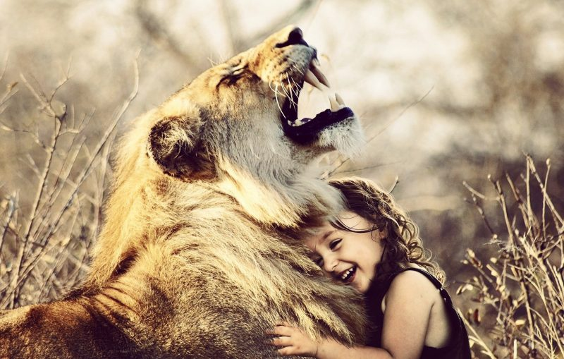 A young girl hugging a huge lion