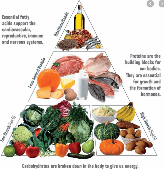The beginner's guide to eating healthy food pyramid. The healthy one.