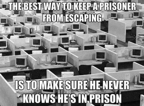 Office cubicles prison