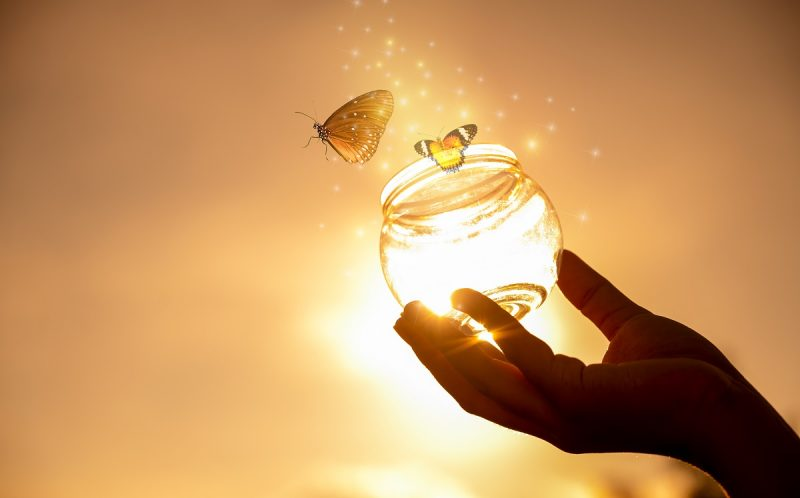 Girl frees butterfly from a jar